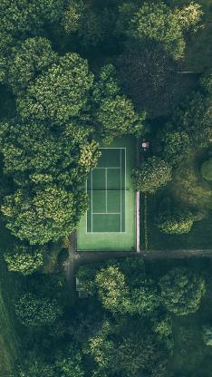 网球场 绿色 树林 运动 氧气