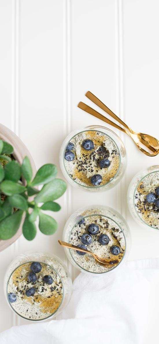 甜品 蓝莓 燕麦 盆栽 绿植