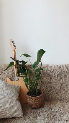 家居 盆栽 沙发椅 吉他