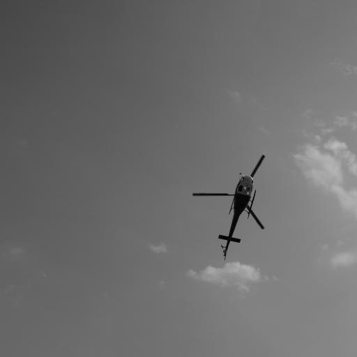 直升机 飞机 灰色 黑白照 飞行 航空