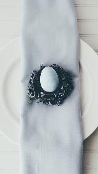 鸡蛋 精致 装饰 食材