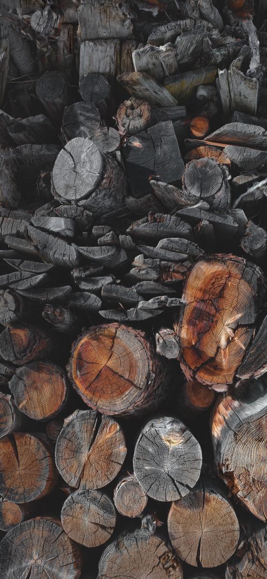 树木 树桩 柴火 堆叠
