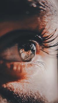 器官 眼睛 特写 长睫毛
