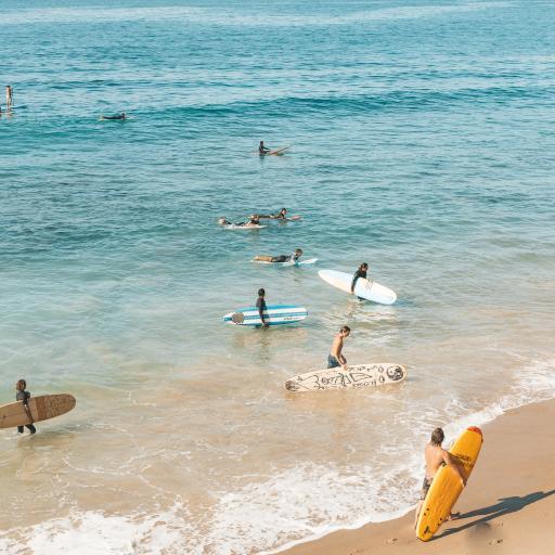 冲浪 海岸 海边 大海 冲浪板