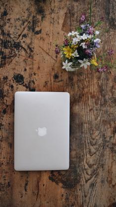 笔记本 电脑 iPhone  鲜花