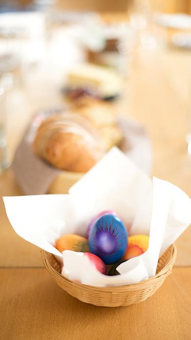 彩蛋 色彩 鸡蛋 染色 艺术