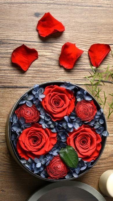 玫瑰 鲜花 盛开 花瓣 蜡烛