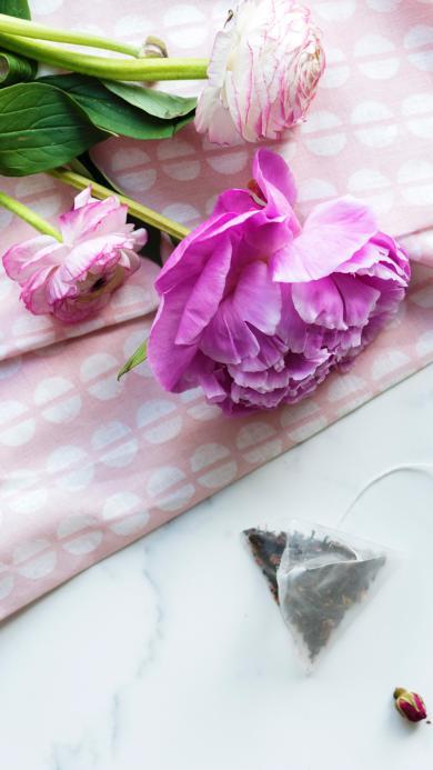 鲜花 花苞 枝叶 新鲜