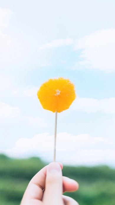 橙子 水果 小清新 维C