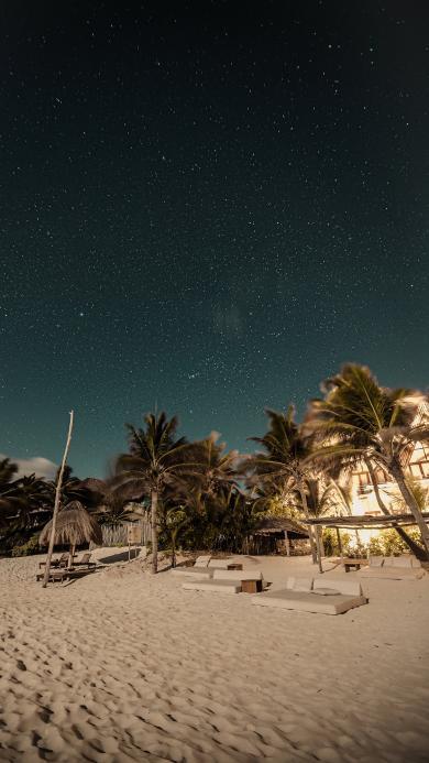 夜晚 星空 海滩 椰树