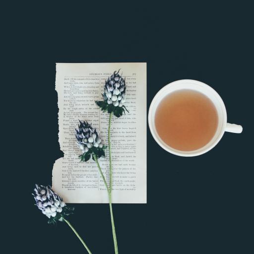 茶水 鲜花 花苞 书信