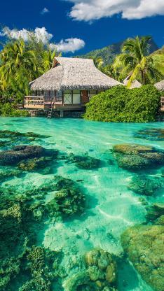 清澈 礁石 海水 度假