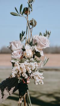 鲜花 花束 捆扎 白玫瑰