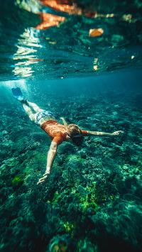 游泳 潜水 海底 海水 运动 极限