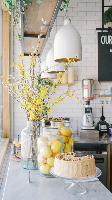 室内 花瓶 鲜花 甜品 蛋糕 柠檬 玻璃瓶