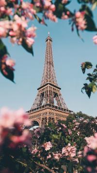 景色 铁塔 埃菲尔 信号塔