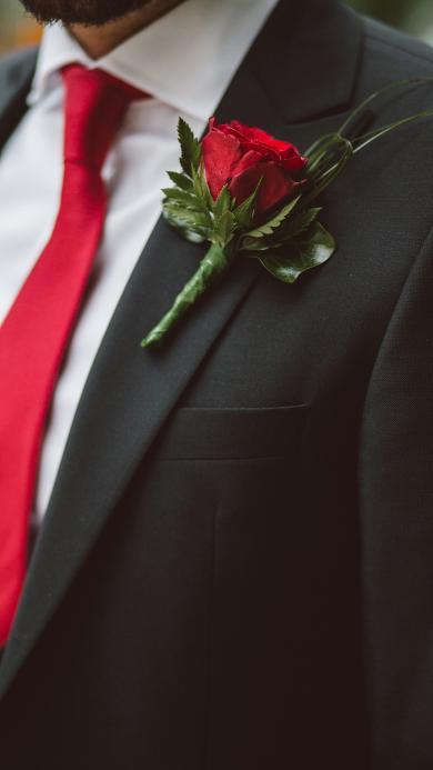 西装革履 胸花 红玫瑰