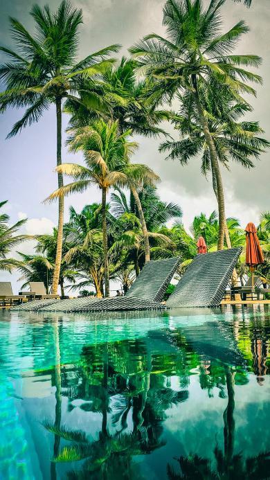 景色 度假 椰树 水面 波光粼粼