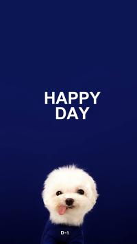 宠物狗 白色 可爱 HAPPY DAY