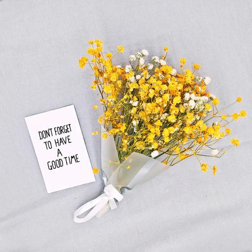 花束 满天星 黄色 小清新