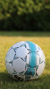 足球 草坪 球场 绿荫