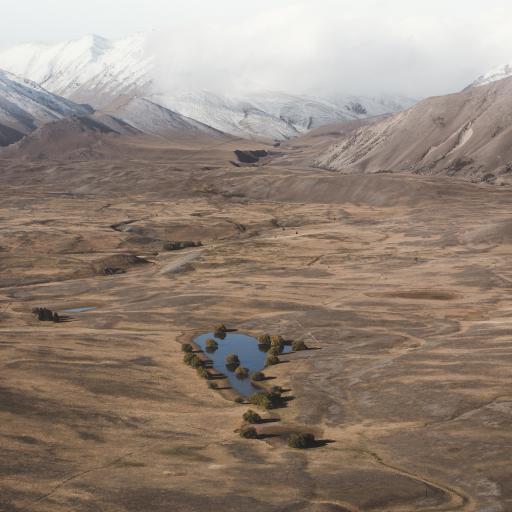 荒漠 湖水 枯萎 干枯