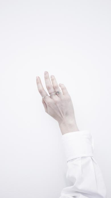 手部 戒指 其它 白 指环