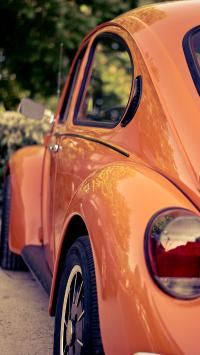 汽车 轿车 复古 甲壳虫 侧面