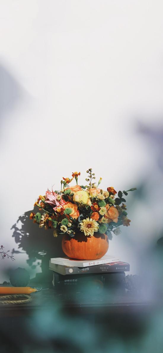 南瓜盆 鲜花 菊花 黄玫瑰 阳光