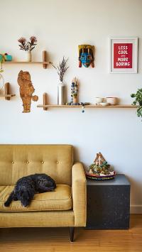 宠物狗 狗子 黑色 沙发