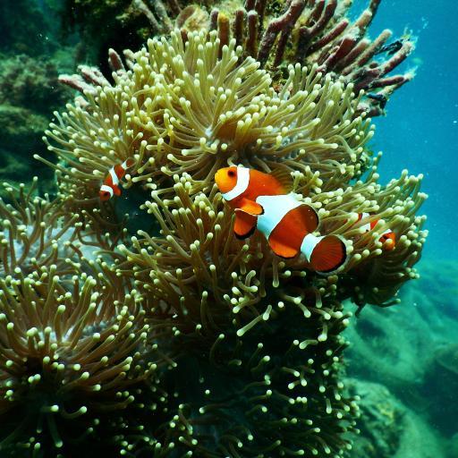 热带鱼 小丑鱼 海葵鱼 珊瑚丛