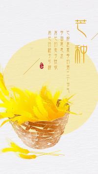 节日 芒种 金黄 插画