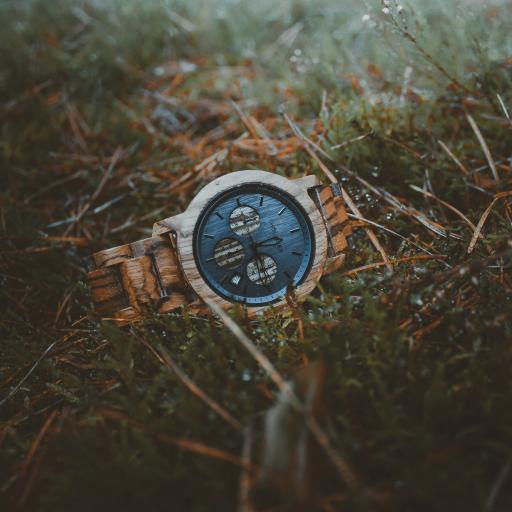 手表 腐蚀 草地 锈迹