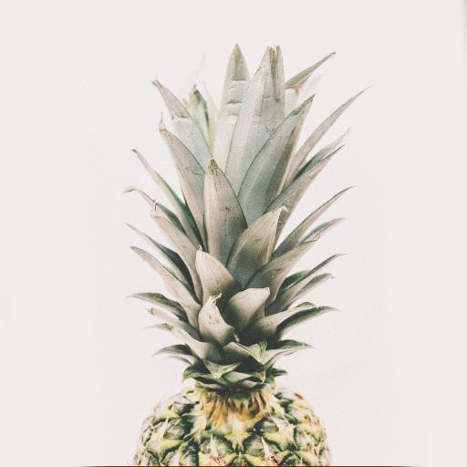 水果 菠萝 热带水果 叶冠