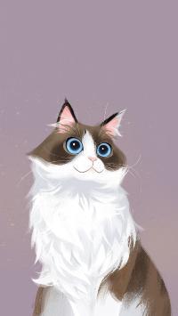 猫咪插画 手绘 布偶猫