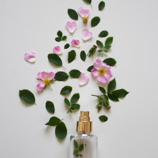 绿叶 花瓣 瓶子 鲜花 枝叶