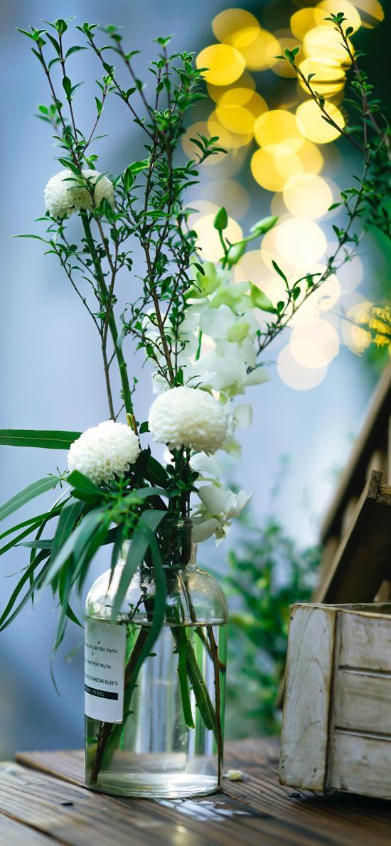 绣球花 花瓶 枝叶 插花