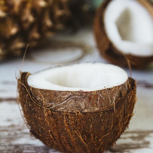 椰子 水果 果实 椰壳 椰肉