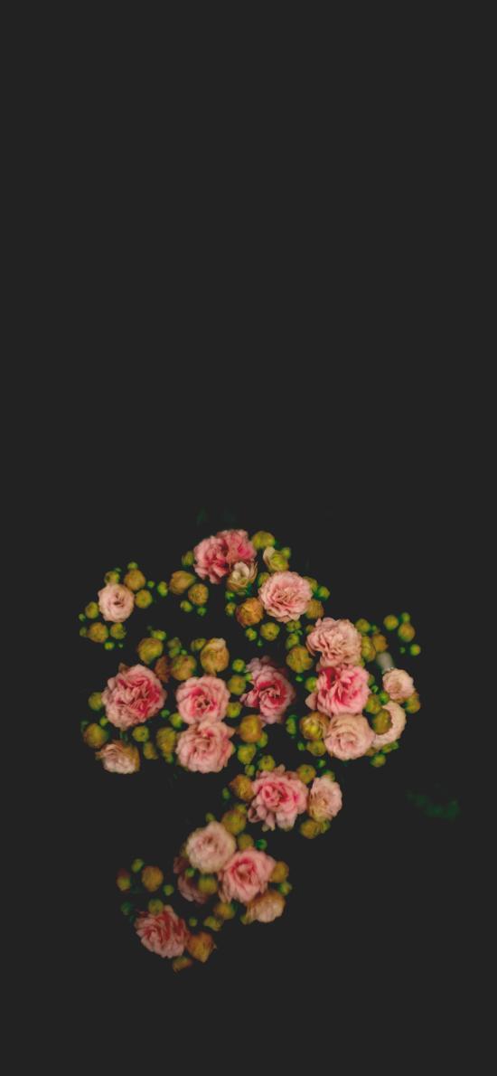 鲜花 盛开 俯拍 盛开