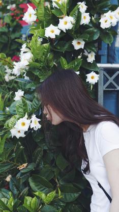 刘亦菲 神仙姐姐 女神 演员 明星 鲜花 长发