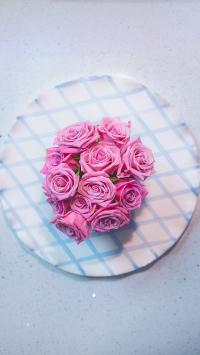 鲜花 玫瑰 花朵 盛开