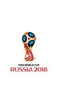 世界杯 足球 比赛 2018 俄罗斯 白色