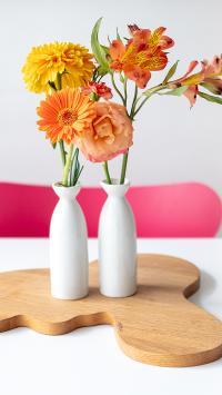静物 摆饰 非洲菊 花瓶