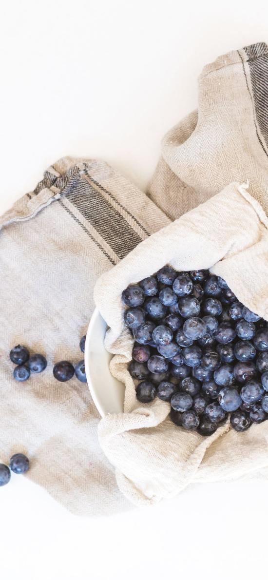 水果 蓝莓 营养 花青素 护眼
