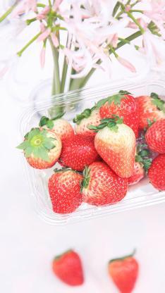 草莓 水果 新鲜 红色