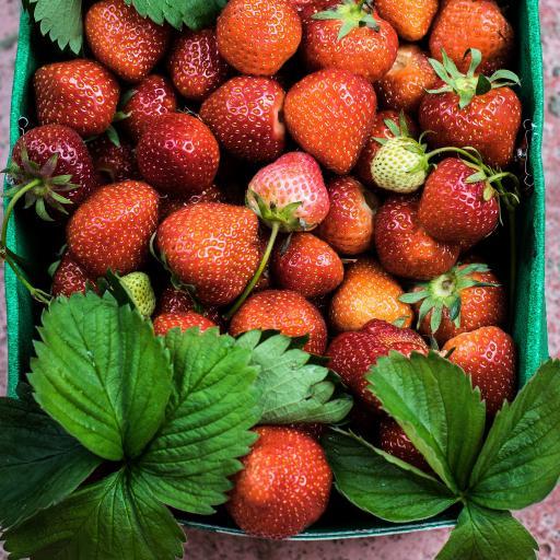 草莓 水果 营养 绿叶