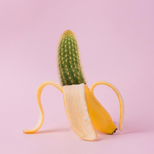 仙人掌 香蕉 结合 新颖