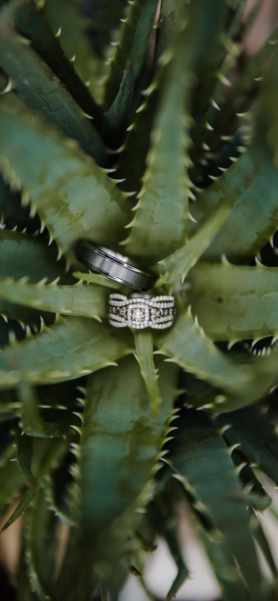 戒指 婚戒 对戒 感情 见证