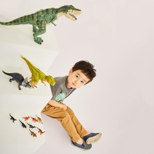萌娃 小男孩 写真 恐龙