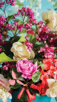 鲜花 花瓣 盛开